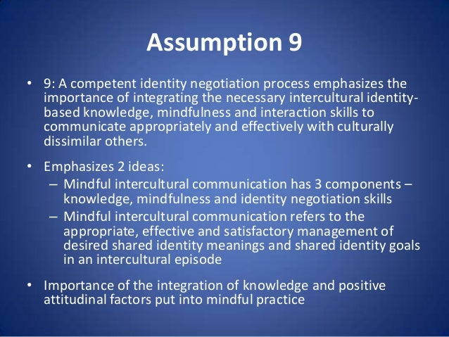 Assumption 9 • 9: A competent identity negotiation process emphasizes the importance of integrating the necessary intercul...