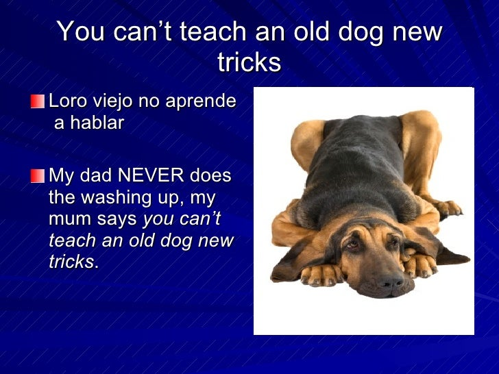 Can T Teach An Old Dog New Tricks Meaning