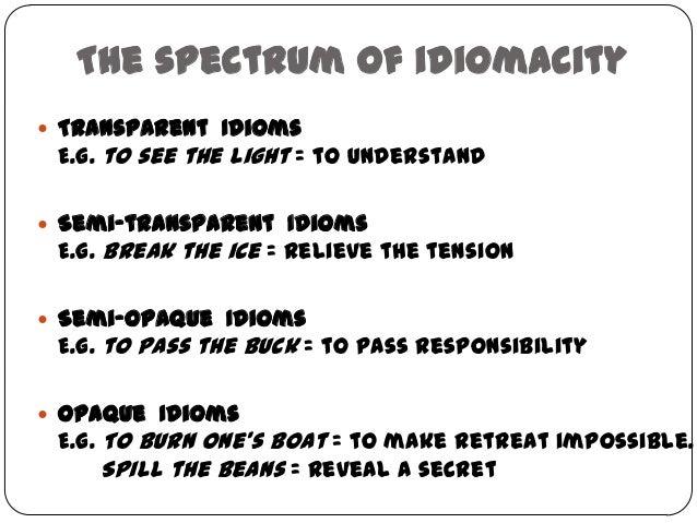Idioms Interface Between Semantics Pragmatics Letras Usp Elizabet