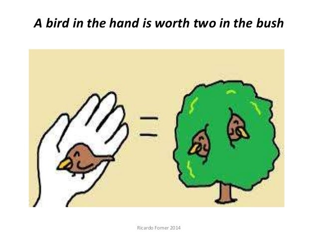 A bird in hand is worth