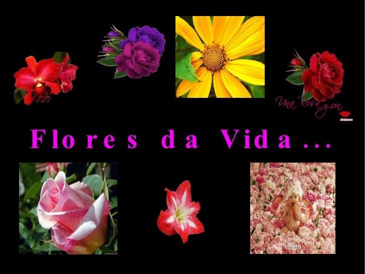Flores da Vida...