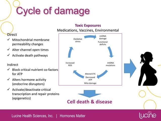 Lucine Health Sciences, Inc.   Hormones Matter Direct  Mitochondrial membrane permeability changes  Alter channel open t...