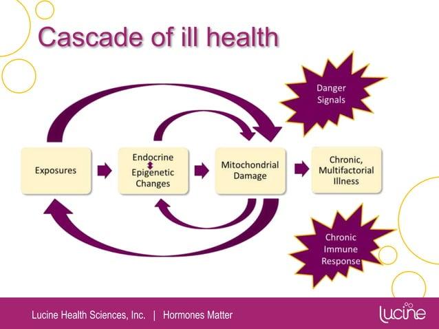 Lucine Health Sciences, Inc.   Hormones Matter Cascade of ill health