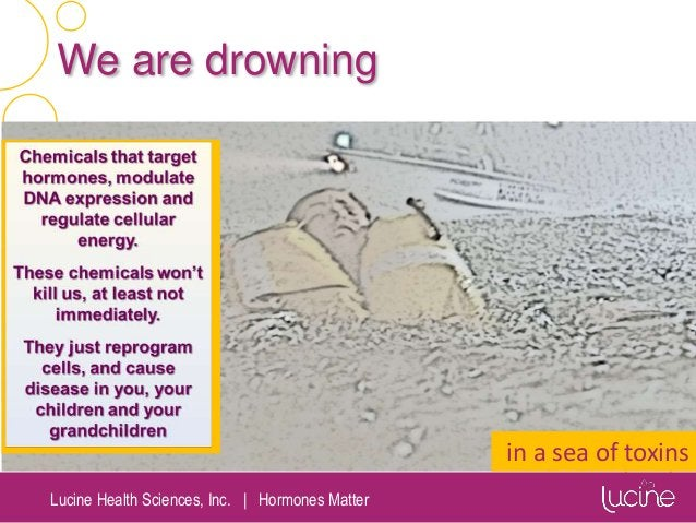 Lucine Health Sciences, Inc.   Hormones Matter We are drowning in a sea of toxins