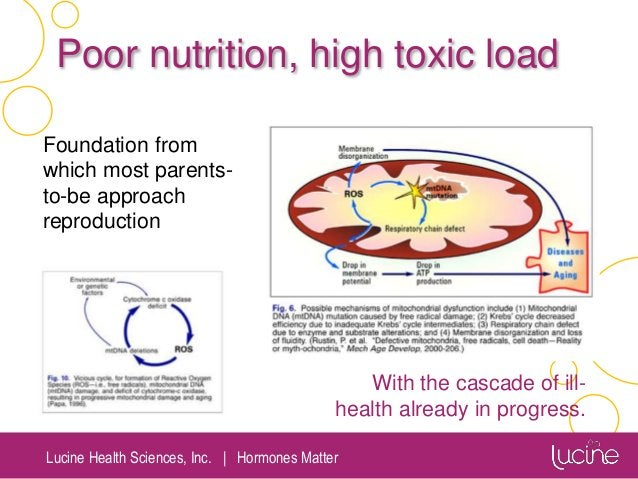 Lucine Health Sciences, Inc.   Hormones Matter Poor nutrition, high toxic load Foundation from which most parents- to-be a...