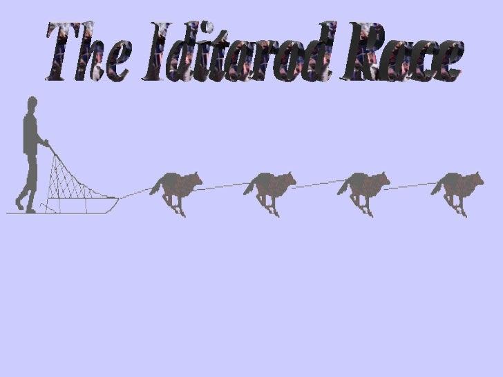 The Iditarod Race