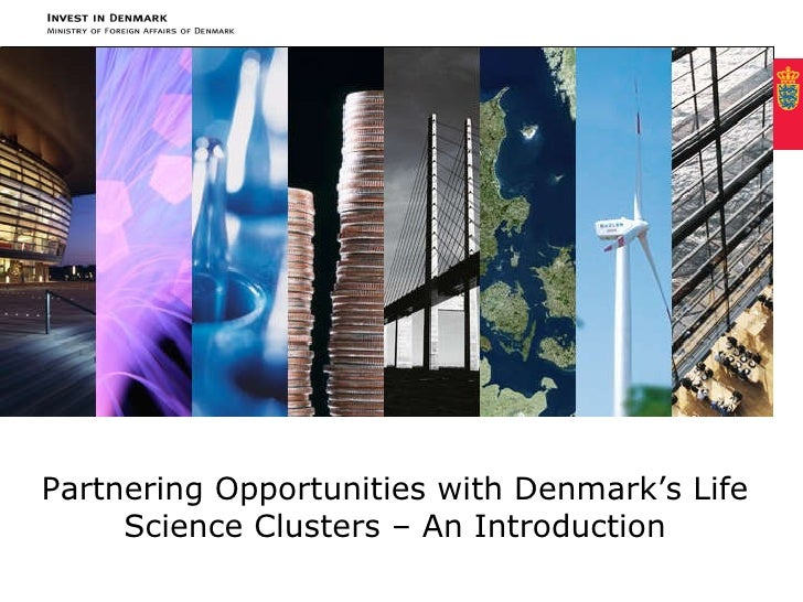 Partnering Opportunities with Denmark's Life Science Clusters – an introduction Partnering Opportunities with Denmark's Li...