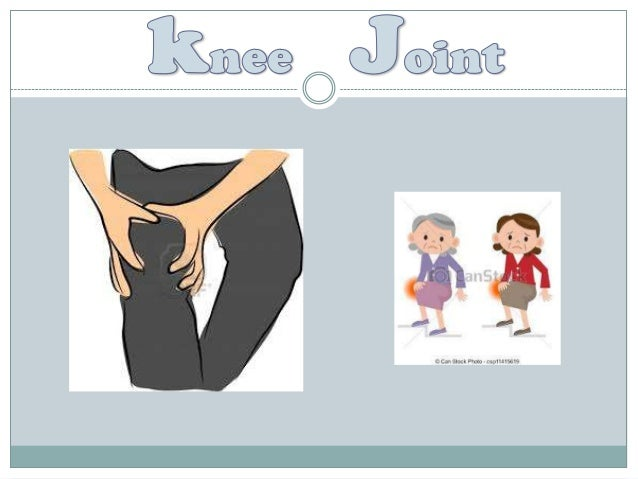 - The Knee Joint is the largest. - Most complicated joint in the body. - Most superficial joint. - Hinge type of synovial ...