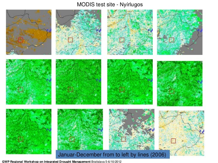 MODIS test site - Nyírlugos                                   Januar-December from to left by lines (2006)GWP Regional Wor...