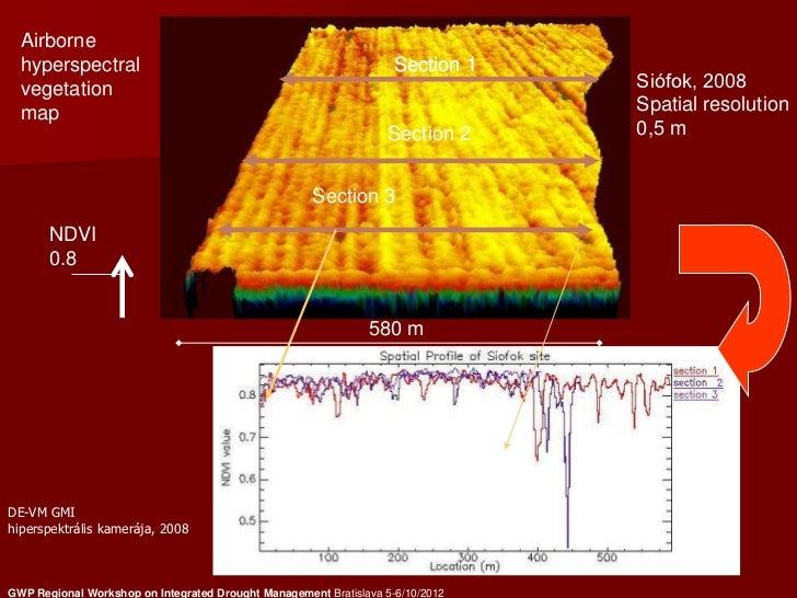 Airborne  hyperspectral                                                     Section 1  vegetation                         ...