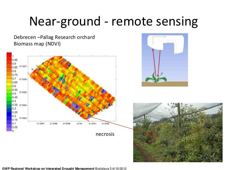 Near-ground - remote sensing       Debrecen –Pallag Research orchard       Biomass map (NDVI)                             ...