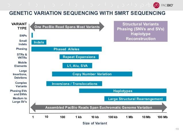 Genetic Variants in Alzheimers Disease