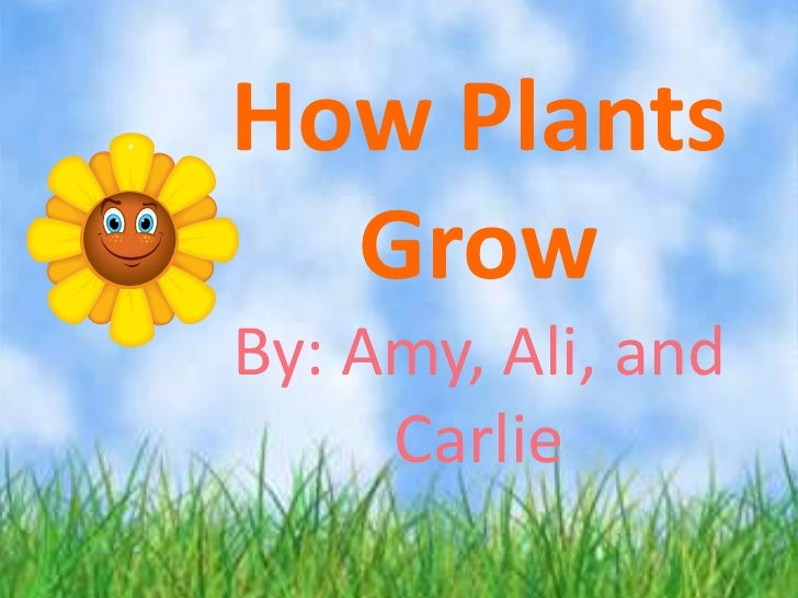 How Plants  GrowBy: Amy, Ali, and     Carlie