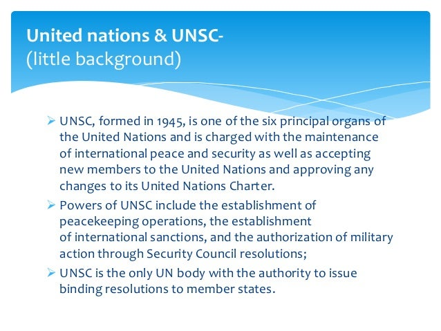 Role of the United Nations Essay Sample
