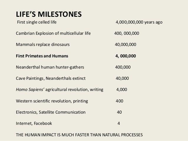 milestones with great lifestyle essay