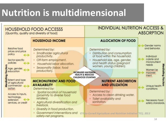 14 Nutrition is multidimensional ©Tata-Cornell Agriculture and Nutrition Initiative (TCi), 2013
