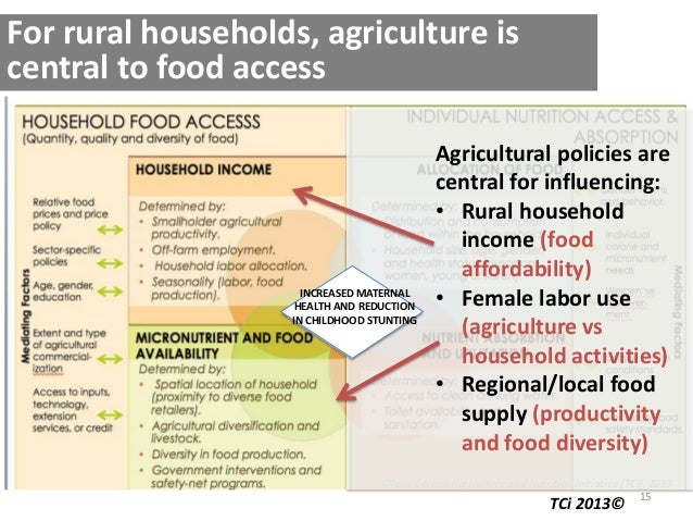 15 ©Tata-Cornell Agriculture and Nutrition Initiative (TCi), 2013 For rural households, agriculture is central to food acc...