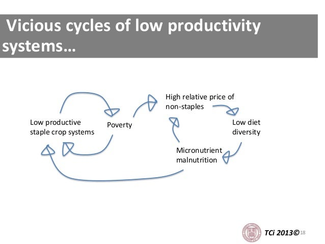 18 Vicious cycles of low productivity systems… TCi 2013© Low diet diversity High relative price of non-staples Poverty Mic...