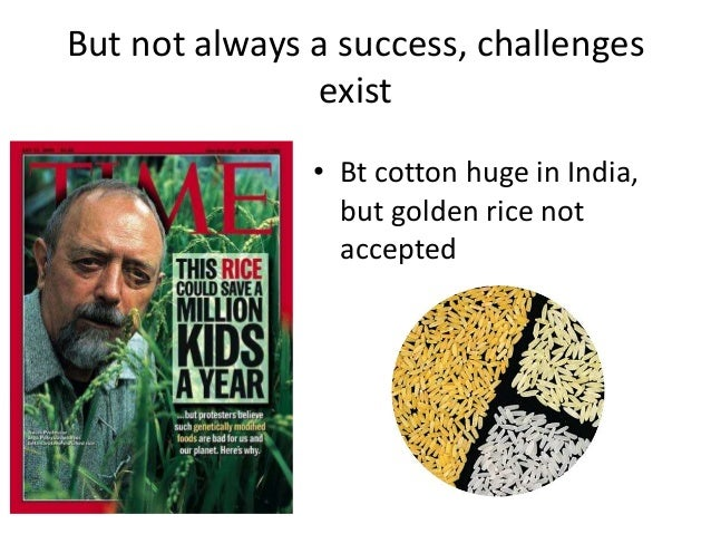 But not always a success, challenges exist • Bt cotton huge in India, but golden rice not accepted