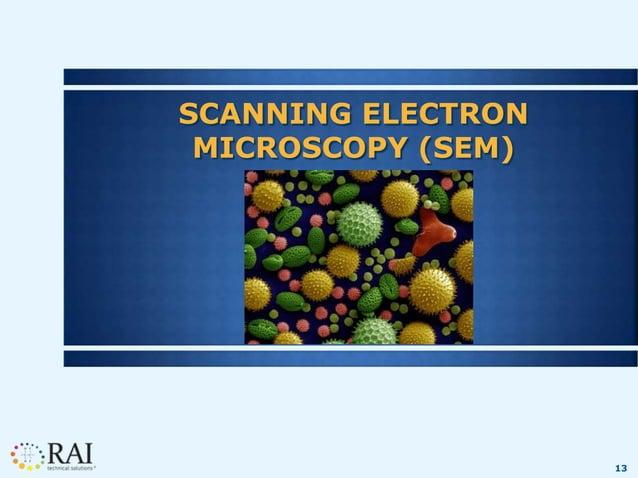 13 SCANNING ELECTRON MICROSCOPY (SEM)