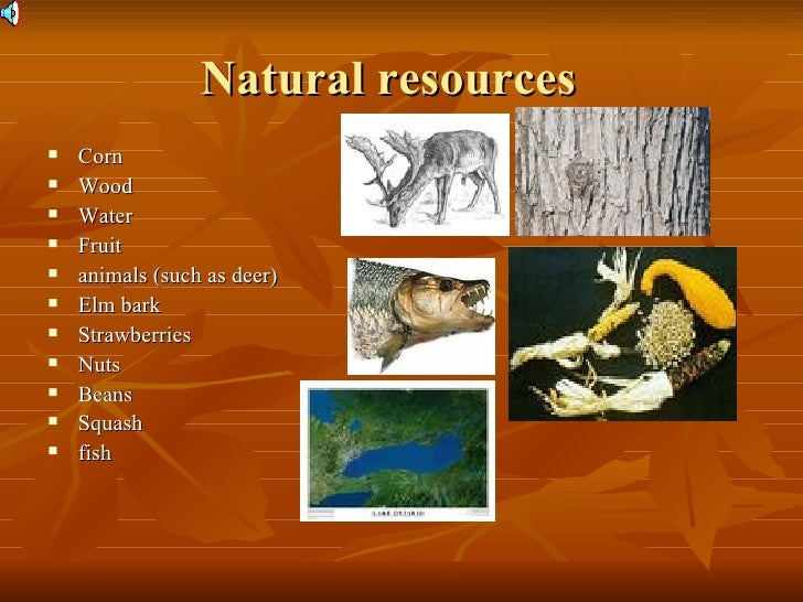 What Are Some Natural Resources In Ohio