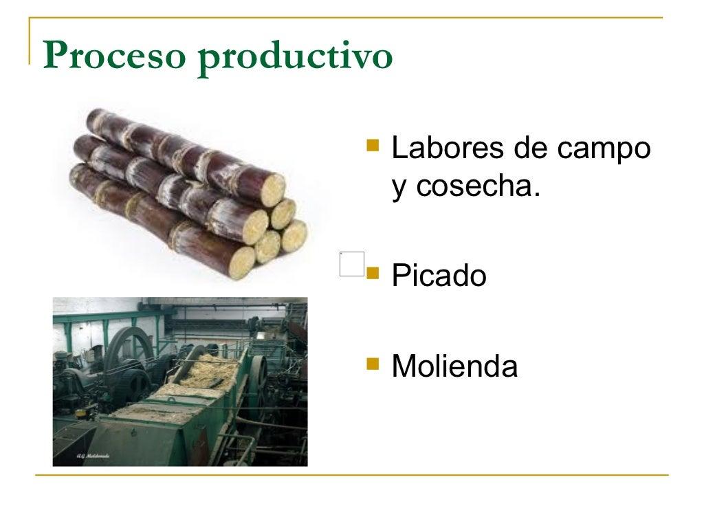 Circuito Productivo De La Caña De Azucar : Caña de azúcar. proceso productivo.