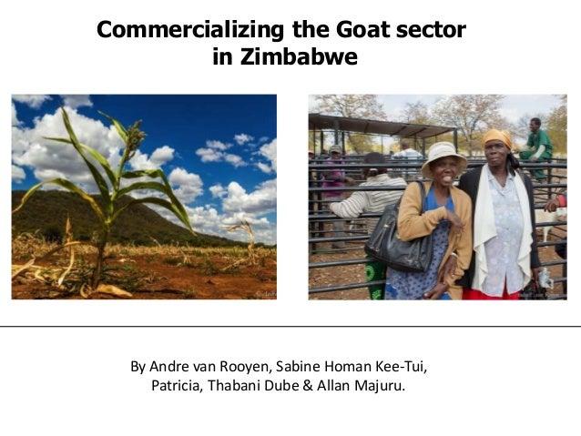 By Andre van Rooyen, Sabine Homan Kee-Tui, Patricia, Thabani Dube & Allan Majuru. Commercializing the Goat sector in Zimba...