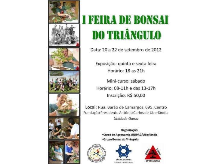 I feira de bonsai do triangulo