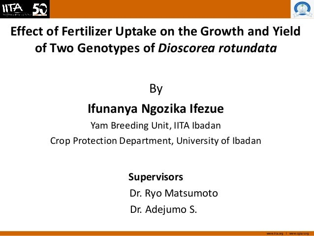 www.iita.org I www.cgiar.org Effect of Fertilizer Uptake on the Growth and Yield of Two Genotypes of Dioscorea rotundata B...