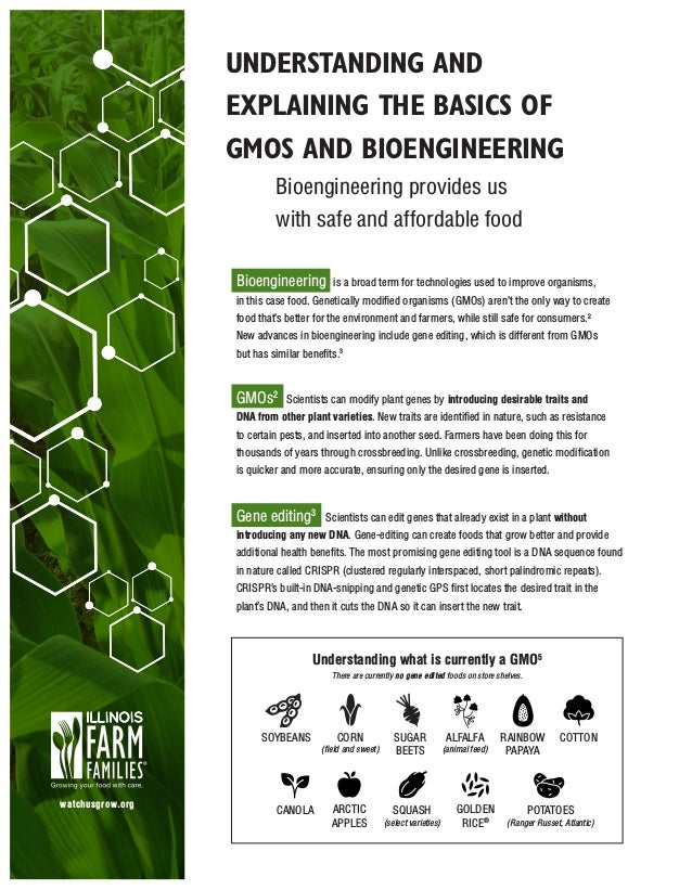 UNDERSTANDING AND EXPLAINING THE BASICS OF GMOS AND BIOENGINEERING Bioengineering provides us with safe and affordable foo...