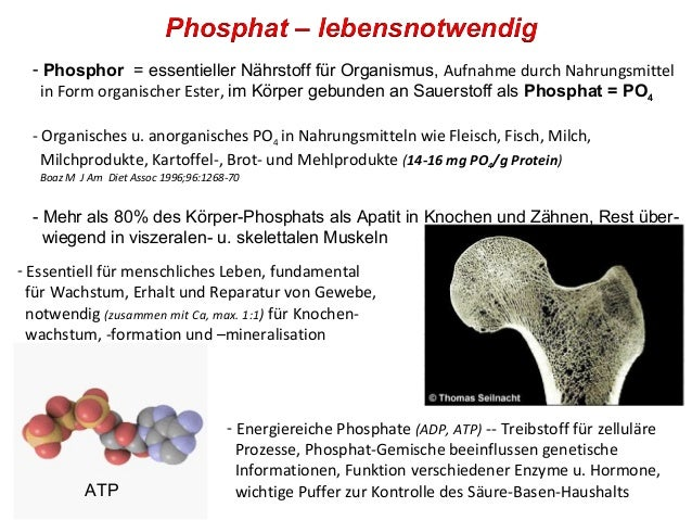 Phosphat In Lebensmitteln
