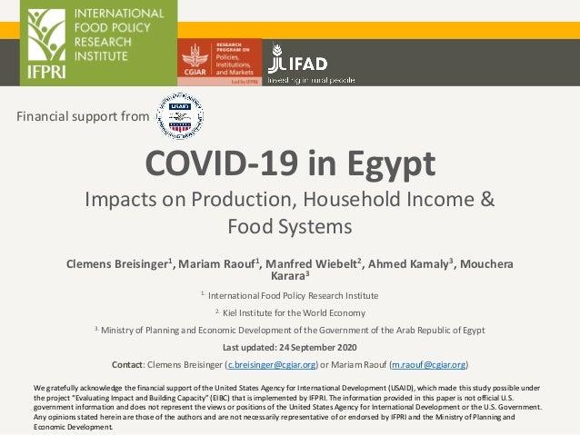 Clemens Breisinger1, Mariam Raouf1, Manfred Wiebelt2, Ahmed Kamaly3, Mouchera Karara3 1. International Food Policy Researc...