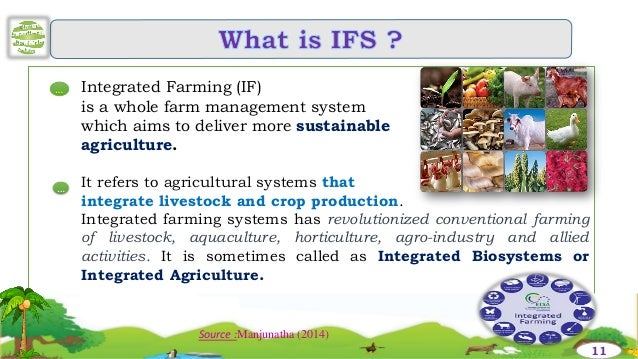 Integrated Farming System PDF
