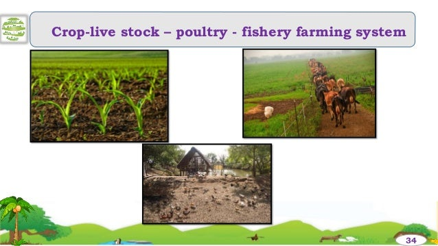 integrated farming system in gardenland Integrated farming system is only the answer to the p roblem of increasing food production for increasing income and for improving the nutrition of small scale farmers with limited resources.