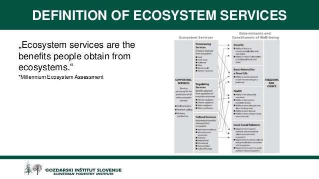 define and discuss the concept of ecological services Ecosystem services are the benefits natural ecosystems provide to people that  broad definition covers a vast array—from the tangible fish sold in a market or.