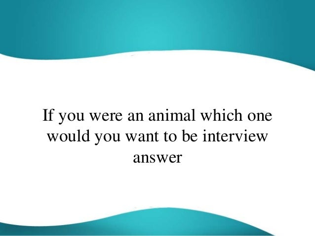 if i were an animal what would i be essay