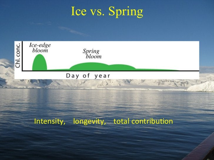 Ice vs. Spring Intensity,  longevity,  total contribution
