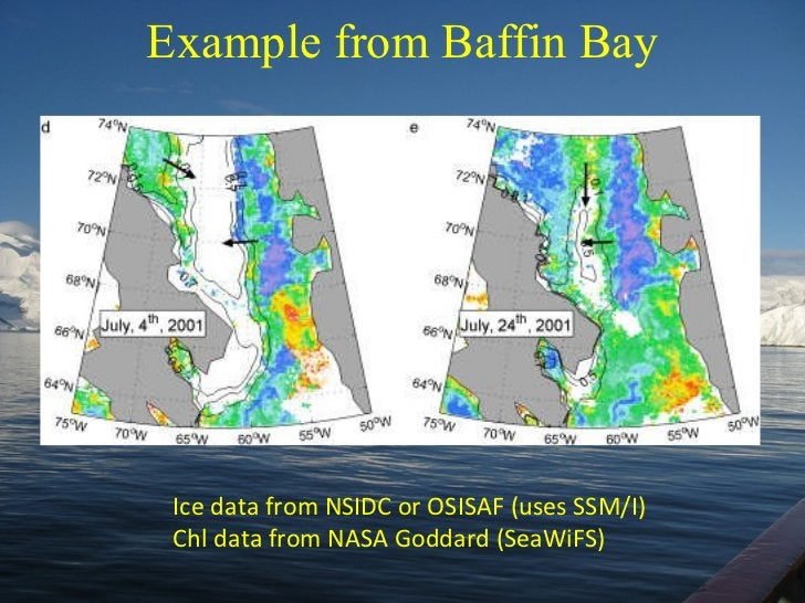 Example from Baffin Bay Ice data from NSIDC or OSISAF (uses SSM/I) Chl data from NASA Goddard (SeaWiFS)