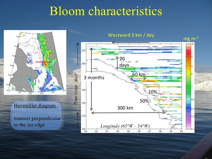 Bloom characteristics 50% Time (year  day) Longitude (65°W – 54°W) 10% 20 days Westward 3 km / day 60 km 300 km 3 months m...