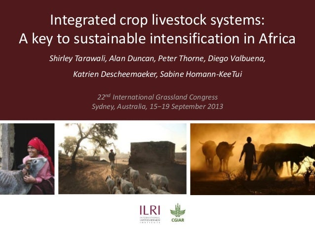 Integrated crop livestock systems: A key to sustainable intensification in Africa Shirley Tarawali, Alan Duncan, Peter Tho...