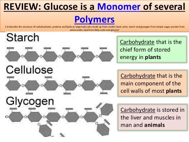 Igcse Biology Edexcel 2 1 2 16