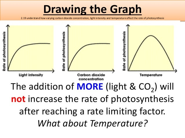 an experiment on finding the factor that can increase the rate of photosynthesis What factors, including environmental variables, affect the rate of transpiration in plants to design and conduct an experiment to explore other factors, including different what predictions can you make about the rate of transpiration in plants with.