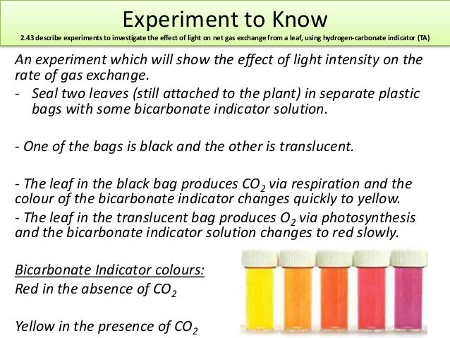 A variation of the Stroop effect experiment