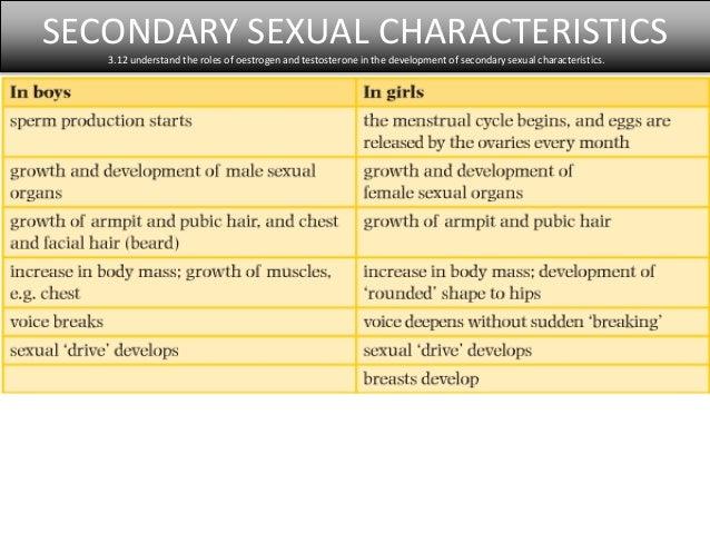 Testosterone development of secondary sexual characteristics