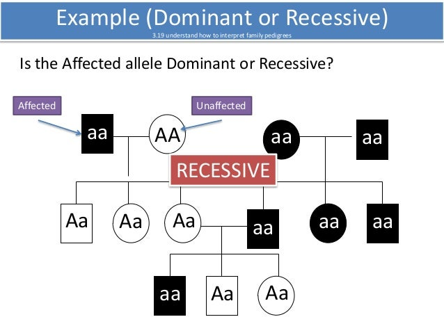 how to tell the difference between autosomal and x linked