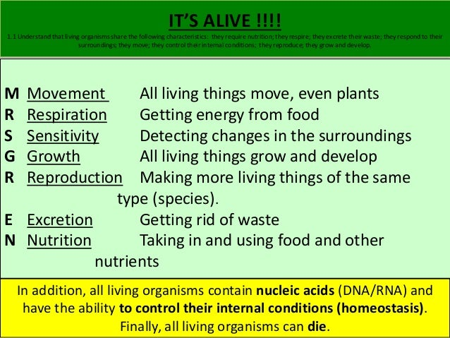 IT'S ALIVE !!!!  1.1 Understand that living organisms share the following characteristics: they require nutrition; they re...