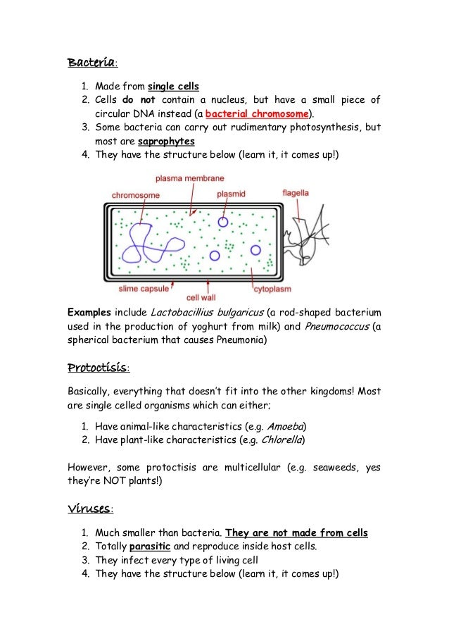 physics revision for igcse Try the gcse bitesize websitethe aqa syllabus is the most similar to cambridge igcse try the s-cool websites for gcse biology, chemistry or physics notes and revision questions.