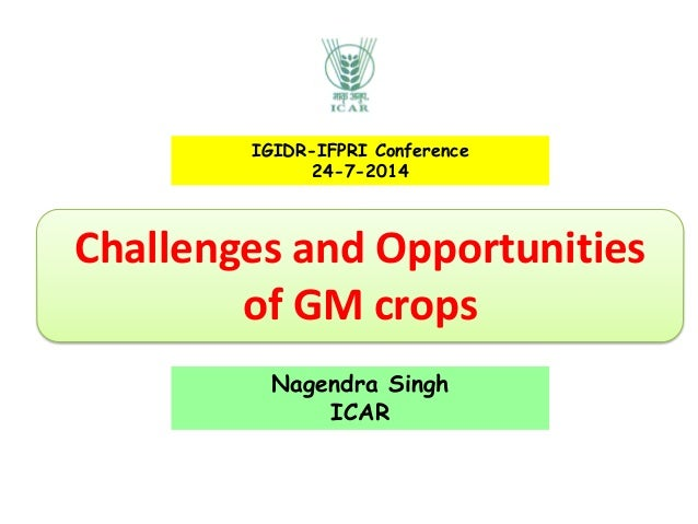 Challenges and Opportunities of GM crops IGIDR-IFPRI Conference 24-7-2014 Nagendra Singh ICAR