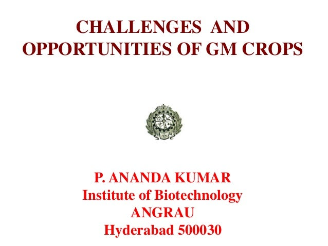CHALLENGES AND OPPORTUNITIES OF GM CROPS P. ANANDA KUMAR Institute of Biotechnology ANGRAU Hyderabad 500030
