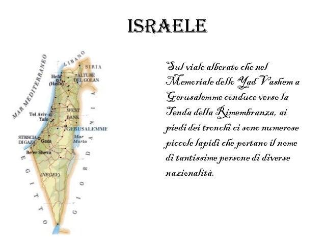 Israele   Sul viale alberato che nel   Memoriale dello Yad Vashem a   Gerusalemme conduce verso la   Tenda della Rimembran...